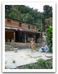 Nepal_2013_(83).jpg