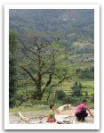 Nepal_2013_(86).jpg