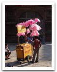 Nepal_2013_(110).jpg