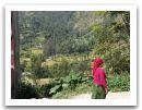 Nepal_2013_(77).jpg