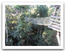 10._AMAZONIE_RESERVE_TAMBOPATA_PUERTO_MALDONADO__(195).jpg